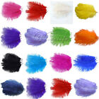50PCS Ostrich Feathers approx 20-25cm/8-10inch wedding party