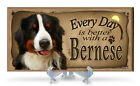 Every Day is Better With A Bernese Mountain Dog Wooden Sign w/ Acrylic Sland