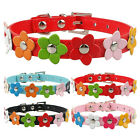 Flower Studded PU Leather Puppy Cat Dog Collars Neck Strap Red Blue Pink Black