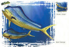 Fishing T-Shirt, SALTWATER FISHING, DOLPHIN FISH, MAHI MAHI,  New