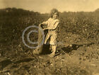 1913 LITTLE GIRL COTTON PICKER BELLS TEXAS PHOTO Lewis Hine