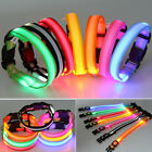 LED Light Dog COLLOR Cool Nylon Glow Flashing Light Up Safety  Collar Sz S-L JS
