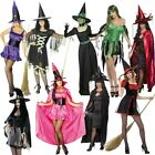 Witch Ladies Halloween Fancy Dress Witches Costume Sexy women's Outfit 10 12 14