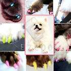 20pcs +1 Glue Soft Pet Nails Caps Dog Cat Claws Silicon Paw Protective  S-XL