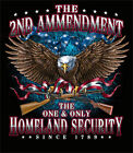 The 2nd Amendment the One and Only Homeland Security Eagle t shirt Ships FREE