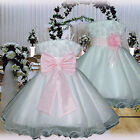 USM2D70 Pink Baby Christening Gown Wedding Party Flower Girls Dress 1 to 14Yrs