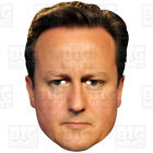 DAVID CAMERON BIG Face Mask A3 & A4 GENERAL ELECTION CONSERVATIVE PRIME MINISTER