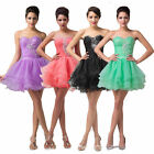 Hipster~ Women's Quinceanera Fancy/Prom/Feast Party Evening Cocktail Short Dress