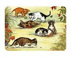 Tuftop Glass Chopping Board Curious Kittens Playing Kitchen Worktop Saver Gift