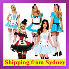 Alice in Wonderland Queen of Heart Cinderella Maid Halloween Fancy Dress Costume