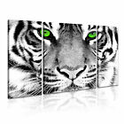ANIMAL Tiger 26 Canvas 3B Framed Printed Wall Art ~ 3 Panels