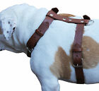 """Genuine Leather Dog Walking Harness  27""""-37"""" chest for Large, XLarge Breeds"""