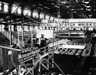 1899 CONEY ISLAND CLUB HOUSE BOXING RING PHOTO Vintage Largest Sizes