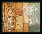 Orchid Elegance I by Tava Studios Asian Floral Still Life Framed Art Print Wall