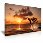 DOLPHIN Beautiful Sunset Canvas Framed Print 1 ~ More Size