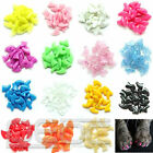 20pcs Soft Cat Pet Nail Caps Claw Control Paws off + Adhesive Glue Free Shipping