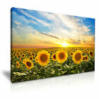 SUNFLOWER Sunset Sky Canvas Wall Art Picture Print ~ More Size
