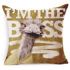 New 45*45CM Cute Pillow Case Gifts Cartoon animal head Seat Cushion Cover Case