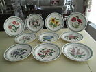 "PORTMEIRION BOTANIC GARDEN DINNER PLATES 10.25"" WIDE  ALL NEW"
