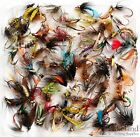 Assortment of Trout Flies for Fly Fishing Wet Dry Nymph Buzzers Qty 10 25 50 100 <br/> Buy with confidence......Over 3780 Sold so far......