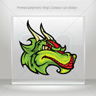 Decals Sticker Dragon Mascot Head Helmet Motorbike Bike Garage bike mtv WRS57