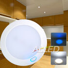 12V illuminated Switch LED Dome/Down/Roof Light Lamp Canravan/RV Cool White/Blue