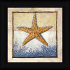 Starfish Ed Wargo 12x12 Beach House Decor Ocean Creatures Framed Art Print
