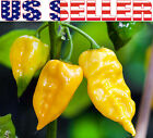 30+ ORGANICALLY GROWN Habanero Lemon Hot Pepper Seeds Heirloom NON-GMO Yellow US