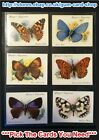 ☆ Player's - British Butterflies 1934 (Large) (G/F)***Pick The Cards You Need***
