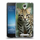 HEAD CASE DESIGNS ANIMALES FAMOSOS CASO DE GEL SUAVE PARA XIAOMI REDMI NOTE 2