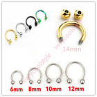16G Horseshoe 6/8/10/12/14mm Round Hoop Barbell Septum Lip Helix Tragus Earrings