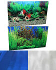 "20"" x 32"" Fish Tank Aquarium Background Mirror or River Lake Double Sided"