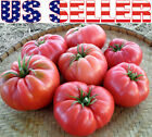 30+ ORGANICALLY GROWN GIANT 1 LB Ponderosa Pink Tomato Seeds Heirloom NON GMO US