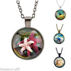 GIFT Fashion Women Girl Sea World Colorful Starfish Gemstone Pendant Necklace