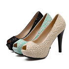 Evening Lace Embroidery Pumps High Heel Formal Lady Sandals Shoes US Size s502