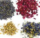 Various Dried Flowers Chamomile, Lavender, Marigold, Rose, Cornflower, Nettle +
