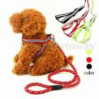 Reflective Nylon Pet Dog Puppy Harness Traction Training Leash Rope Lead Strap