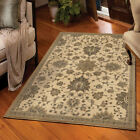 Ivory Scrolls Curls Rings Traditional-Persian/Oriental Area Rug Floral 3309