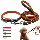 Didog Leather Padded Puppy Dog Cat Collar and Leash Set for Chihuahua Poodle
