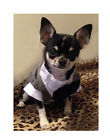 NEW DOG TUX Tuxedo COAT JACKET GRAY White Wedding XS-XL  (4 SM BREED