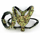 Didog Army Green PU Leather Dog Harness&Collar Set Spiked Studded Neck 17-24""
