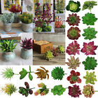 Artificial Simulation Plastic Decor Home Succulent Houseplant Diy Plants Flowers