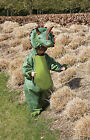 Childs Triceratops Fancy Dress Costume