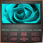 ' Turquoise / Teal  Rose '  Flower Bloom Art Canvas More Style & Size