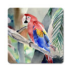 Macaw - Oversized Rubber Coasters Set of 4 or 6