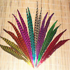20PCS Natural Pheasant Tail Feathers Wedding Party Crafts Decoration 8Colors