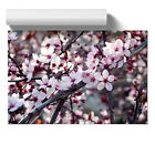 Poster Print Wall Art Flower Pink Cherry Blossom Tree 2 Floral Botanical