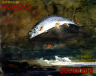 POSTER JUST ENJOY THE FISHING COLORADO BIG FISH TRAVEL VINTAGE REPRO FREE S/H