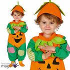 Baby Toddlers Cute Pumpkin Patch Halloween Trick Treat Fancy Dress Costume & Hat