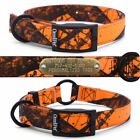 Hunting Dog Collar Blaze Orange Mossy Oak Camo Nylon with Custom Brass Name Tag